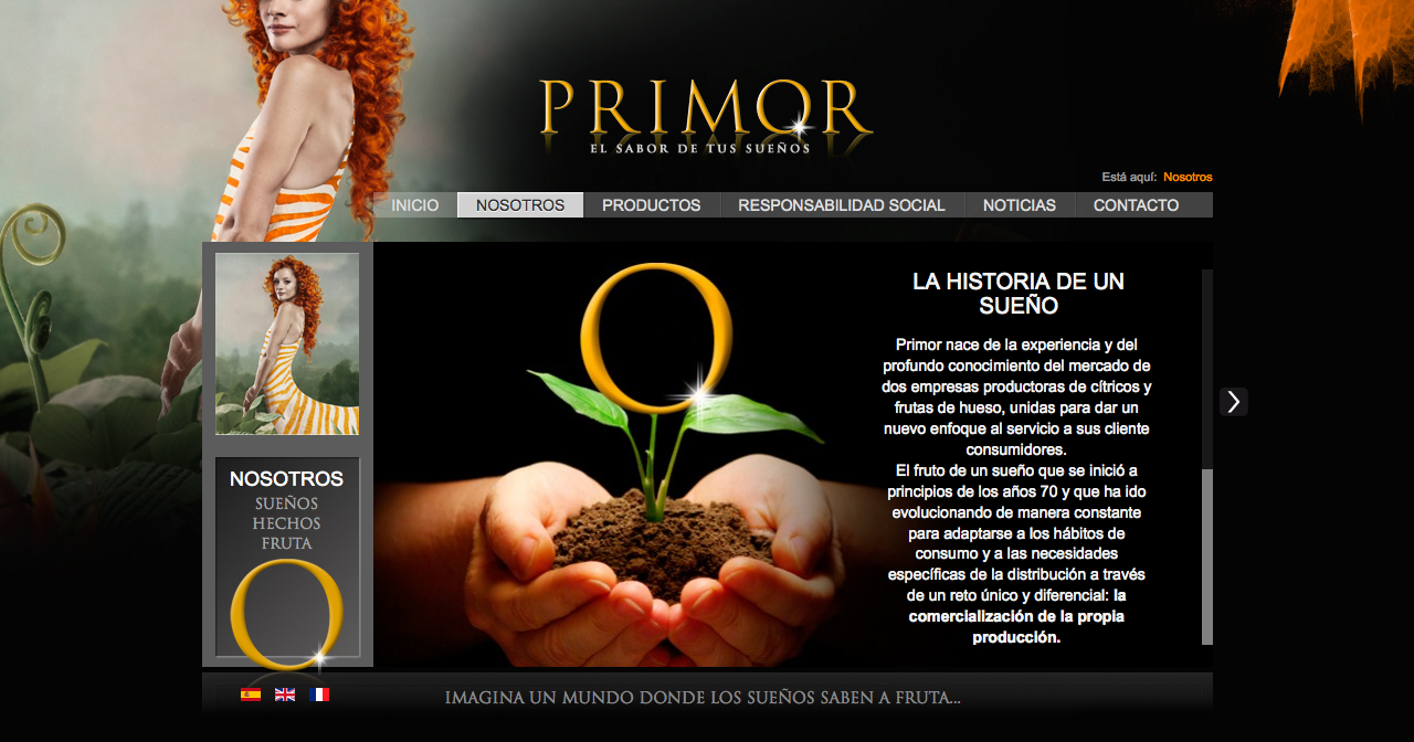 Primor website